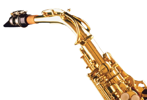 Buying a Saxophone Mouthpiece and Neck